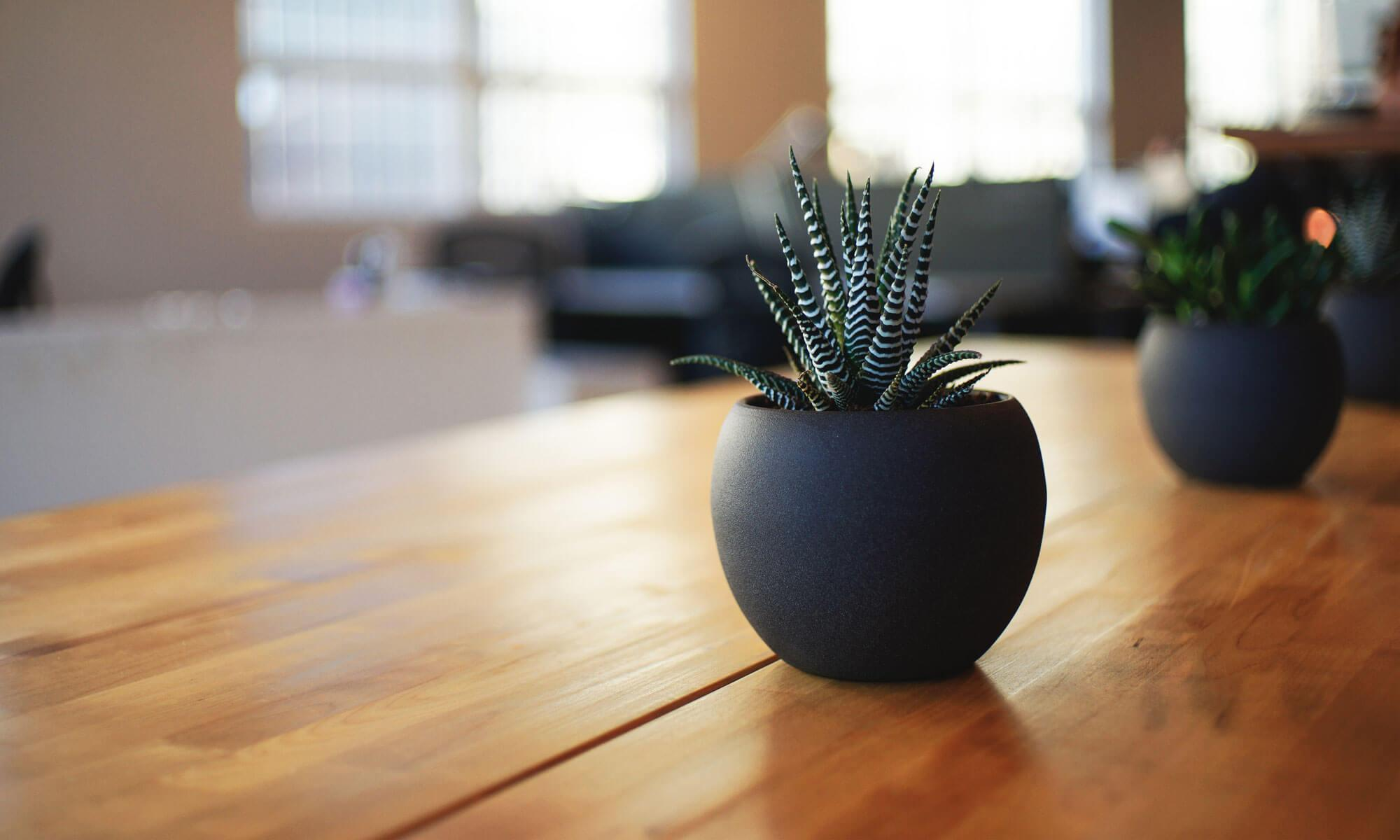 横浜市のマンション売却は仲介手数料最大半額のLL住宅販売へ